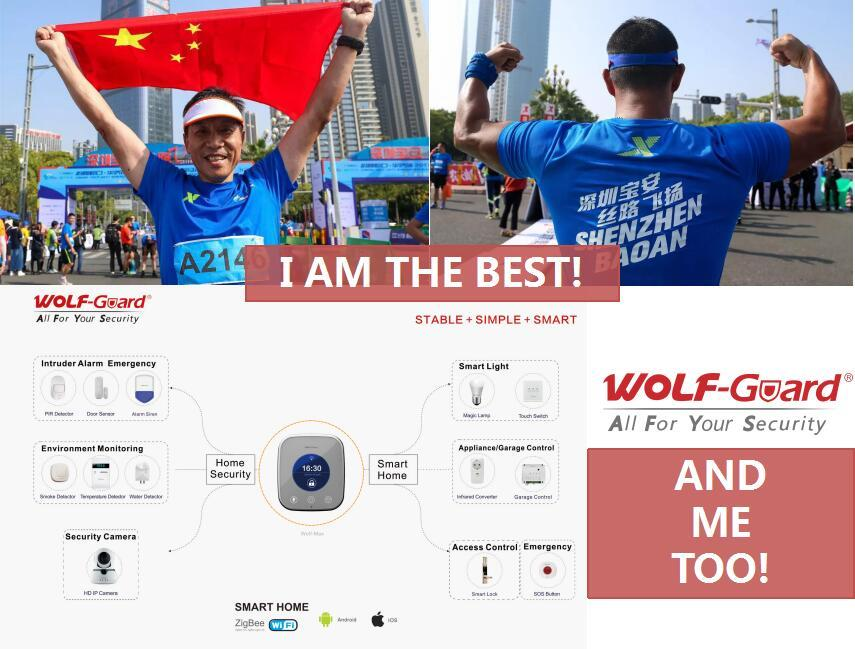 #Wolf-Guard is here,are you in? - 2017 Shenzhen Baoan Intern
