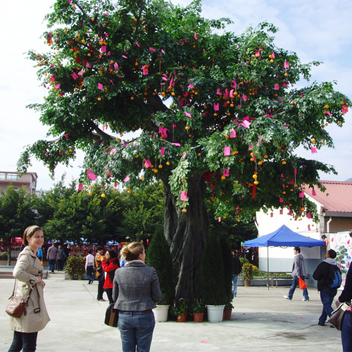 huge artificial ficus tree wishing tree large tree