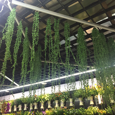Artificial green hanging plant for sale