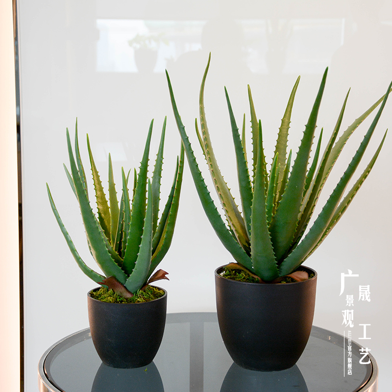 high quality artificial Aloe plants