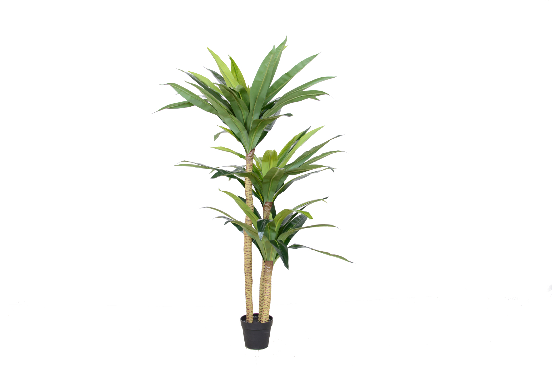 artificial bonsai dracaena fragrans factory