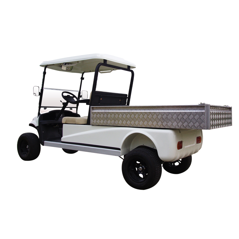 Lifted Cargo Cart(DC Also Available )
