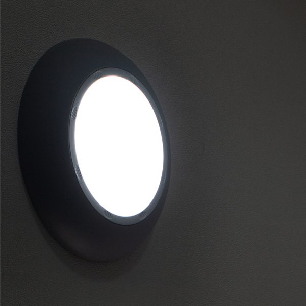 Decorative lighting LED wall light 20W/30W