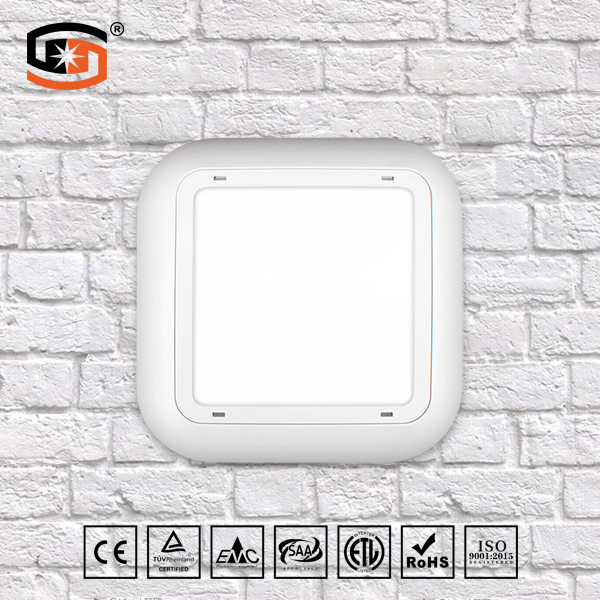 LED wall light 30W/40W