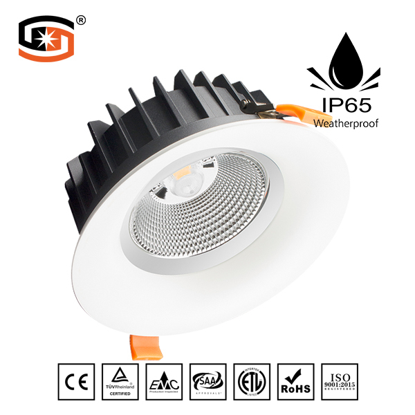2018 NEW LED down light COB D series