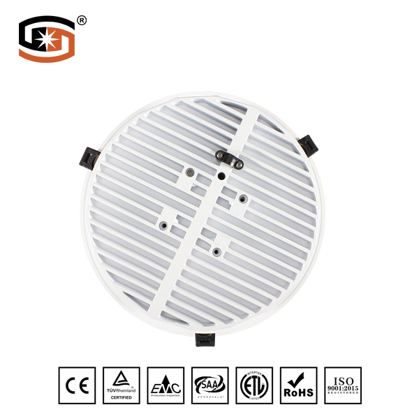 2019 NEW LED Down light