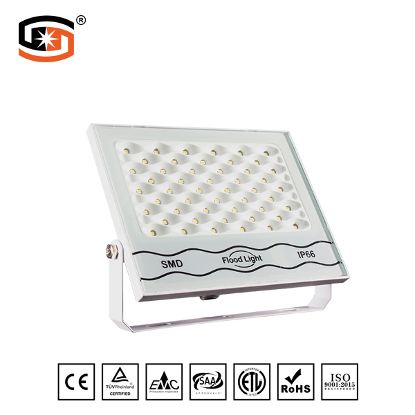 NEW Developed 100W LED flood light White