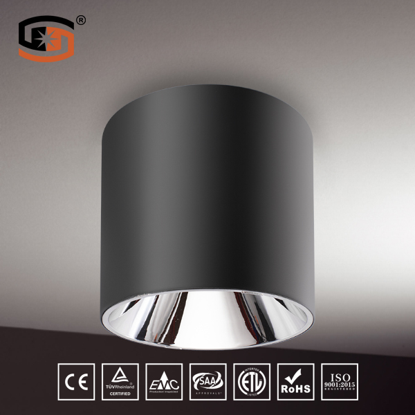White & Black finish IP54  LED downlight