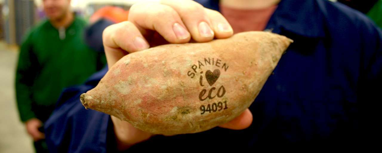 Laser Engraved Fruits? Yep,we can do that!