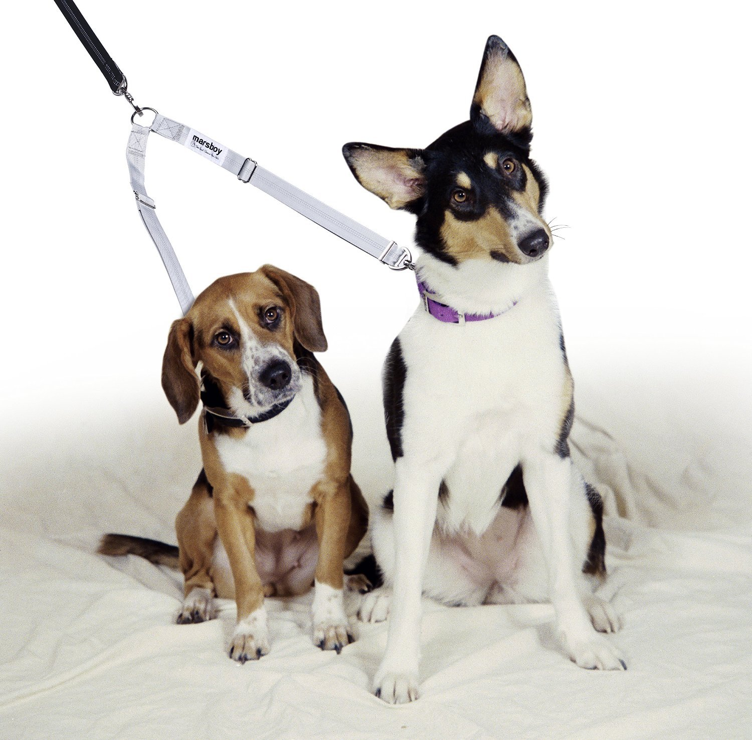 marsboy Double Dog Leash Coupler Tangle Free 2 in 1 for Two
