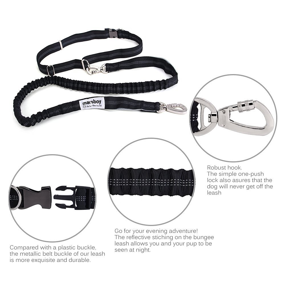 Running Dog Leash for Large Dogs with Pouch Extension Waist