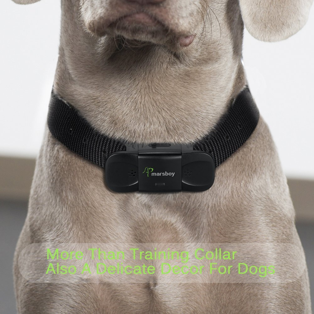 Collier marsboy Dog Training, Rechargeable et All-Weather Re