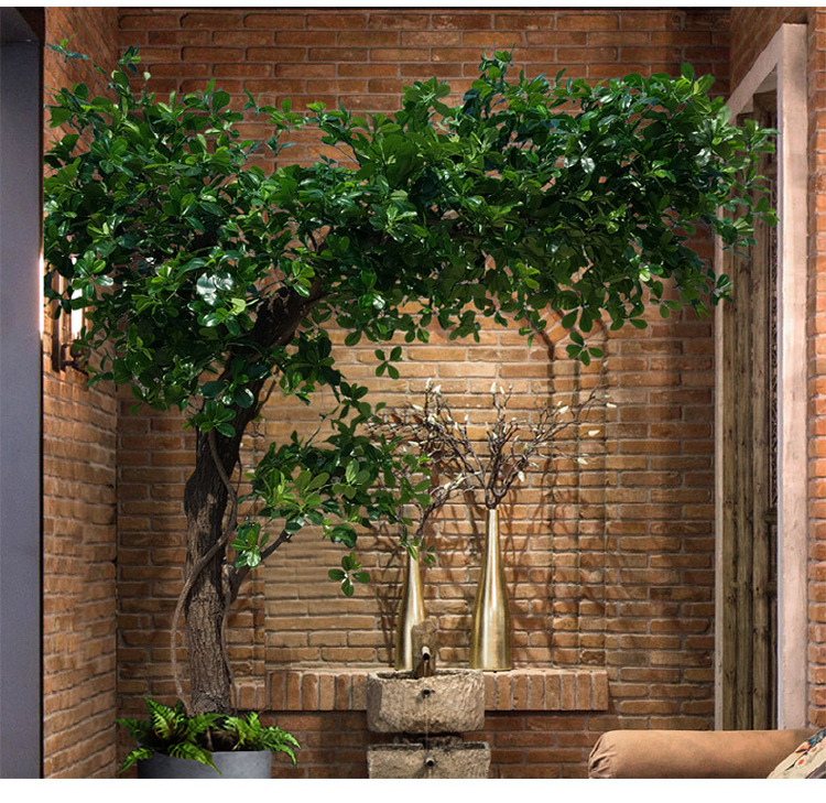 ornamental ficus tree artificial bonsai