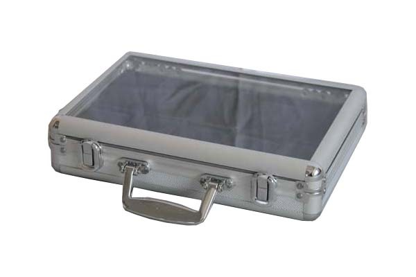 Carrying Display Case with Transparent Window for 10 Watches