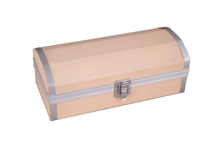 Storage Case for Watches and Jewelry- WT014