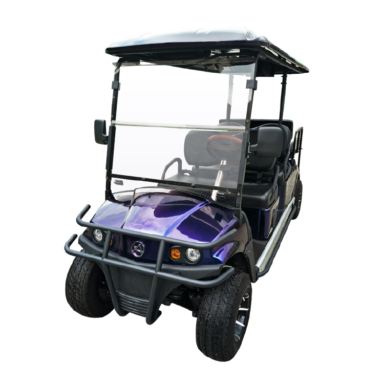 4+2 Seater Golf Cart- Vehicle Model: RD-4AC+2+D(DC Also Avai