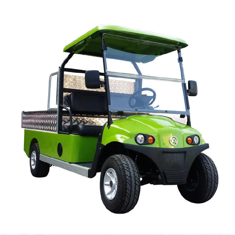 2 Seater Cargo Cart(DC Also Available)