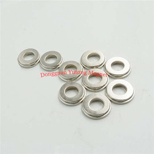 Ring Stepped Neodymium Speaker Magnets