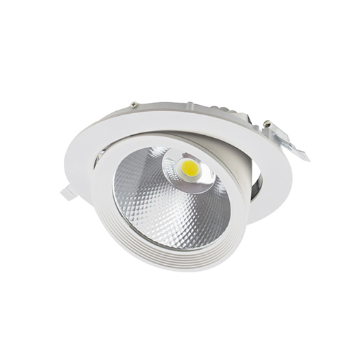 Round recessed COB LED DOWN LIGHT Lotus Series