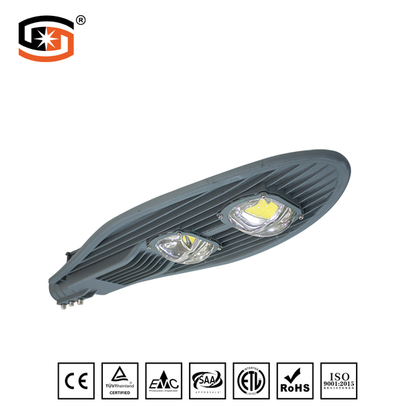 LED STREET LIGHT COB Sword Series 100W