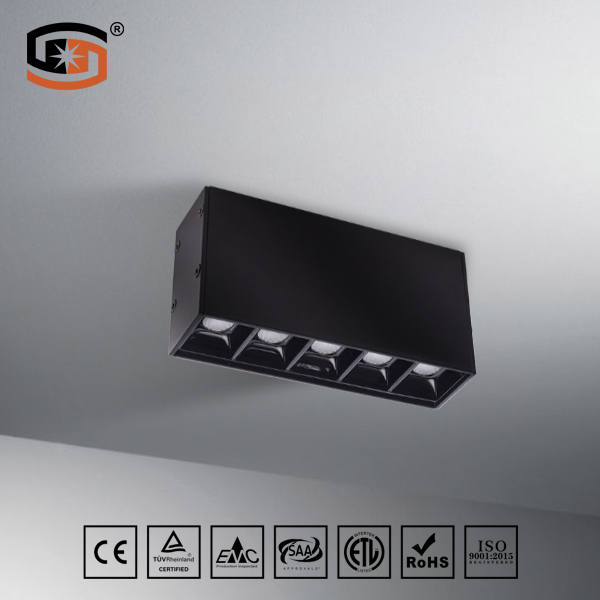 LED surface mountd downlight 10W 20W 30W