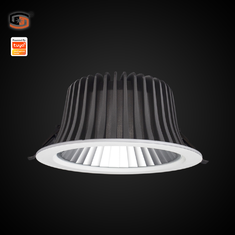 Tuya smart led downlight
