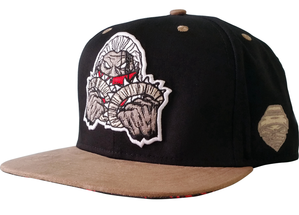 Custom design 6 panel snapback cap with 3D embroidery logo