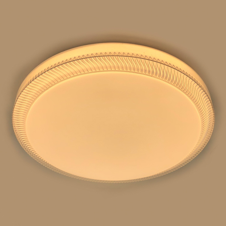 LED ceiling lamp 24W equivalent 40W european hot sale lamp L