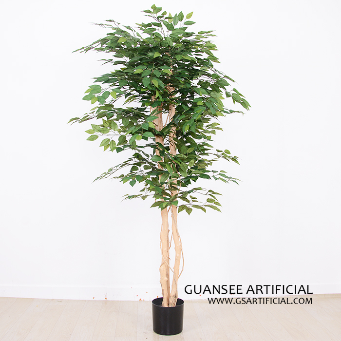 home decoration 6ft small ficus tree