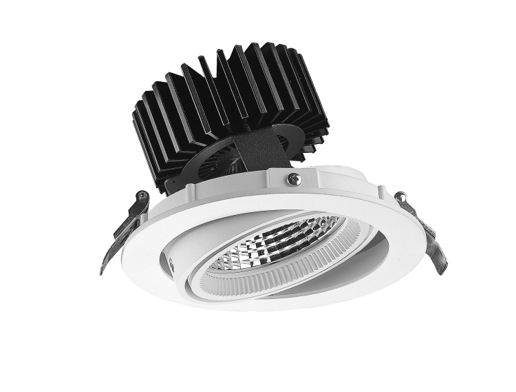 ADJ05 Adjustable LED Downlight 30W 45W
