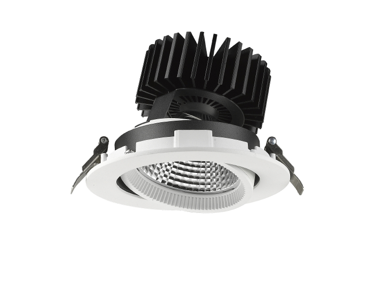 ADJ06 Adjustable LED Downlight 30W 45W