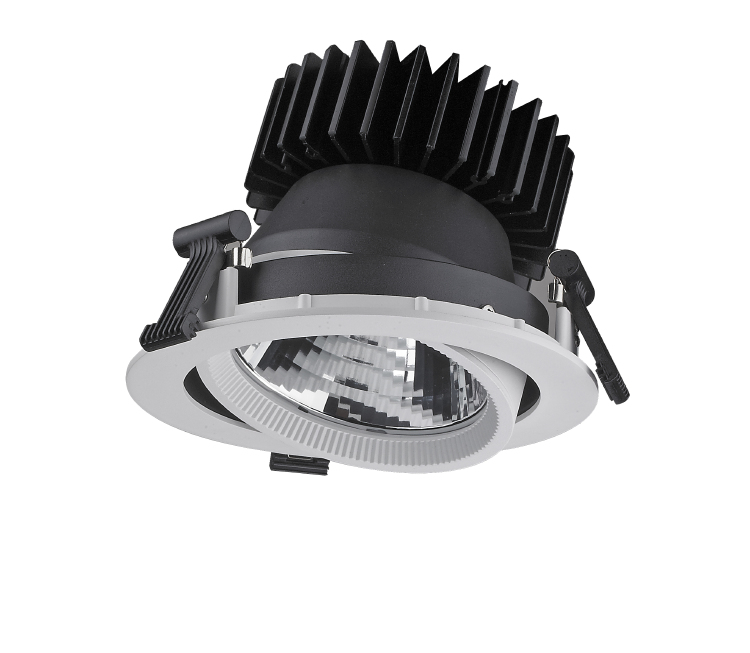 ADJ06 Adjustable LED Downlight 45W 55W