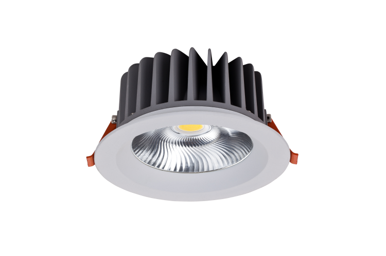 RDL IP44 LED Downlight 20W 30W