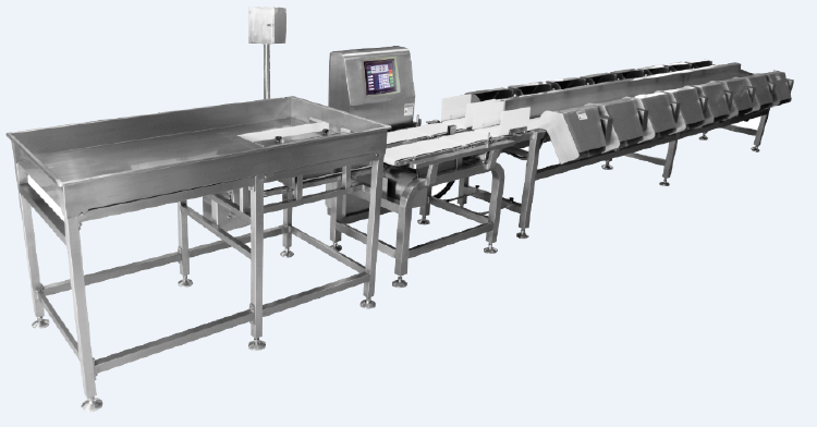 Hi-speed accurate multi-weight grader for seafood and poultr
